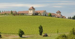 Kings Estate Vineyards